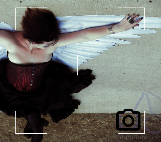 Photography - Paper Wings