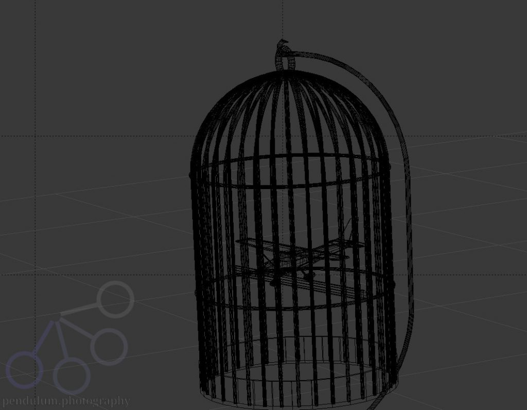 Caged Bird Geometry